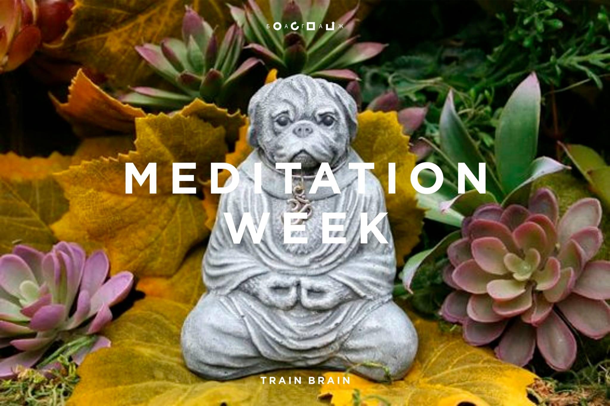04_july_2016_MEDITATION WEEK